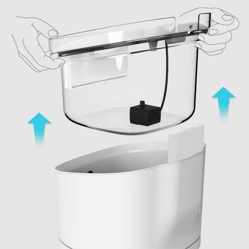 fontaine a eau chat chien spring