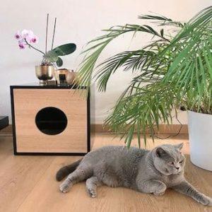 Bac à litière design pour chat – DANDY CABINET