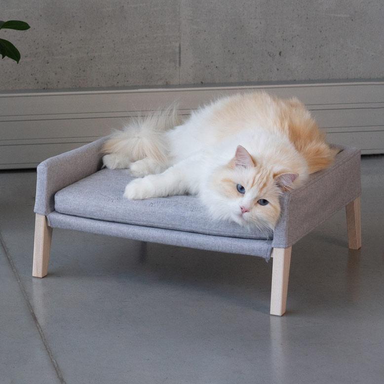 lulu canapé design pour chat