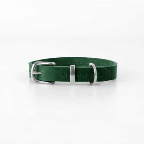 collier design pour chien