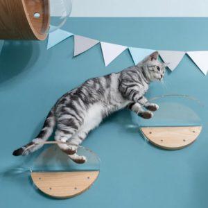 Etagère murale transparente design pour chat – LACKCLEAR
