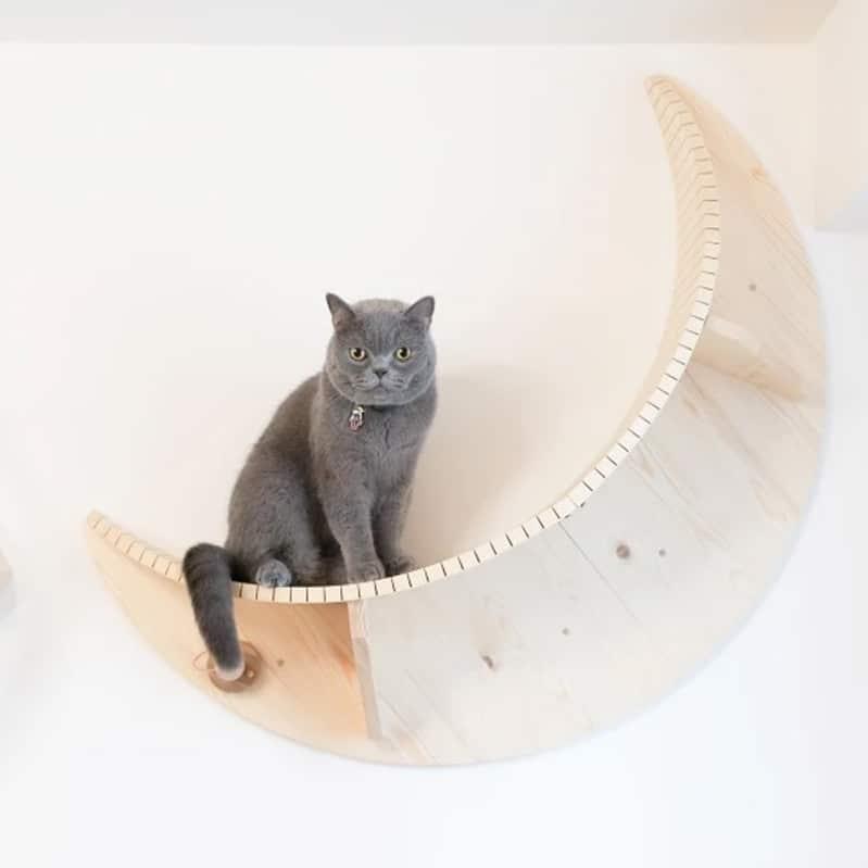 etagère murale pour chat en bois