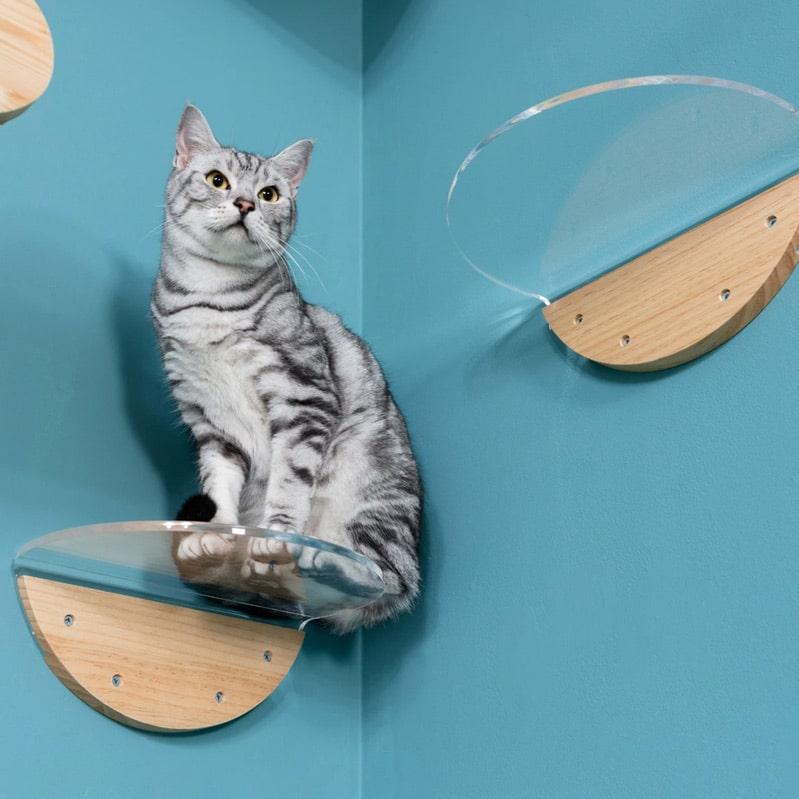 etagere murale pour chat design round lack clear