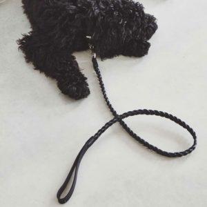 Laisse tressé en cuir pour chien – BERGAMO