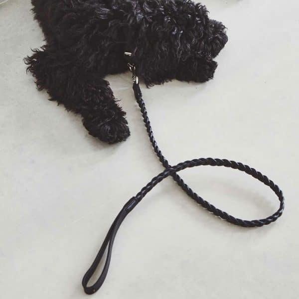 laisse en cuir bergamo pour chien