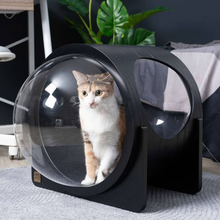 niche pour chat design spaceship