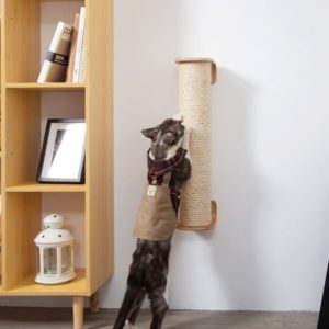 Griffoir mural design pour chat – CYLINDER