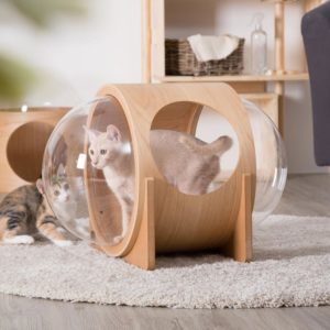 Niche design pour chat – ALPHA