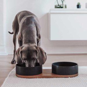 Double gamelle en céramique pour chien ou chat – VUKU