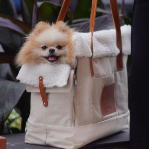 Sac de transport pour chien élégant – LIIVA